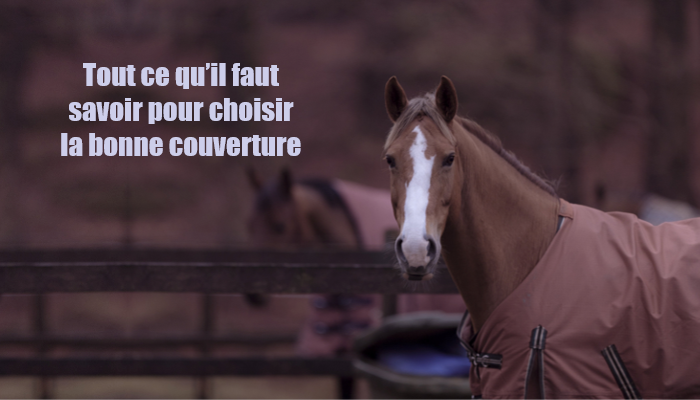 couverture pour cheval